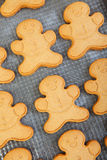 Freshly Baked Gingerbread Men Stock Photography