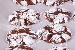 Freshly baked, home-made chocolate crinkle cookies on parchment Stock Images