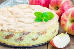 Freshly baked homemade apple sponge cake Stock Photo