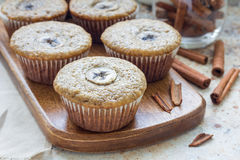 Freshly baked homemade banana cinnamon muffins with slice of banana on top, on wooden board Stock Image