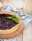 Freshly baked homemade blueberry pie Stock Photography