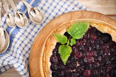 Freshly baked homemade blueberry pie Royalty Free Stock Photos
