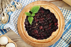 Freshly baked homemade blueberry pie Royalty Free Stock Image