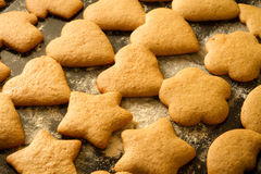 Freshly baked homemade gingerbread cookies Stock Images