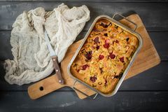Rhubarb cake from the oven royalty free stock image