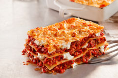 Freshly baked Italian beef and mozzarella lasagne Royalty Free Stock Photo