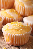 Freshly baked lemon muffins with frosting macro. Vertical Stock Photos