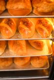 Freshly baked loaves of bread in sesame seeds on showcase in supermarket, close-up view.  stock photo