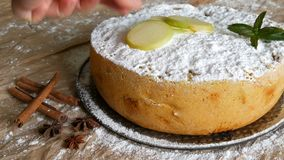 Freshly baked lush delicious apple pie charlotte sprinkled with powdered sugar is decorated with sliced apples, next to. Cinnamon sticks and anise stock video
