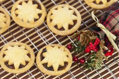 Mini star topped mince pies on a cooling rack for christmas stock photography
