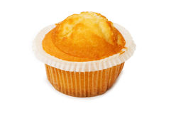 Freshly baked muffin isolated Stock Photography