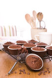Freshly Baked Muffins Royalty Free Stock Images