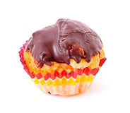 Freshly baked muffins Stock Images