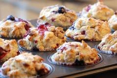 Freshly baked muffins Stock Image