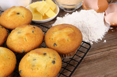Making cakes - freshly baked muffins with ingredients Royalty Free Stock Photography
