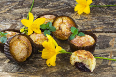 Freshly baked muffins with plum, mint and lily flower. On wooden table Royalty Free Stock Photo