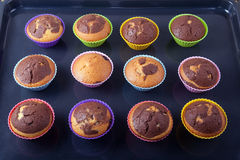 Freshly baked muffins on a roasting pan Stock Photos