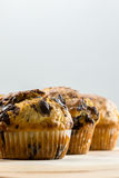Freshly baked muffins Royalty Free Stock Image
