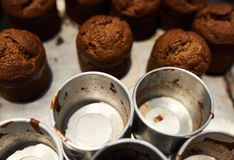 Freshly baked muffins sitting with tins on a bakery counter. Closeup of tins and delicious looking freshly baked chocolate muffins sitting on a counter in a stock photography