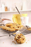 Freshly baked oatmeal raisin cookies Stock Photography