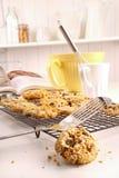 Freshly baked oatmeal raisin cookies Stock Photography