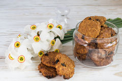 Freshly baked oatmeal raisin cookies and narcissus Stock Image