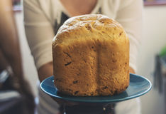 Freshly baked onion bread Stock Photography