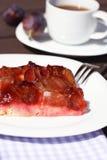 Freshly baked plum cake Stock Image