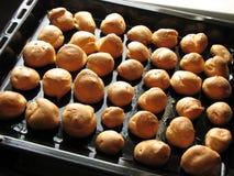 Freshly baked profiteroles on the baking sheet Stock Images