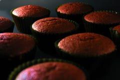 Freshly baked red velvet cupcakes Royalty Free Stock Images