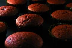Freshly baked red velvet cupcakes Stock Images