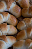 Freshly baked rolls Royalty Free Stock Image