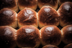 Freshly baked rolls smeared garlic butter and dill. Tinted Royalty Free Stock Images