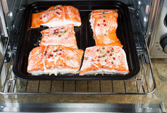Freshly Baked Salmon in Oven Tray Royalty Free Stock Images
