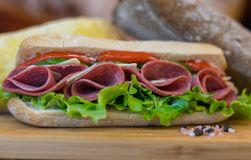 Freshly baked Sandwich with salami and fresh vegetables stock image