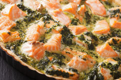 Freshly baked Savory quiche with salmon and spinach macro. horiz Royalty Free Stock Photography