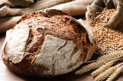 Freshly baked traditional bread Royalty Free Stock Image