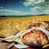 Freshly baked traditional bread Stock Images