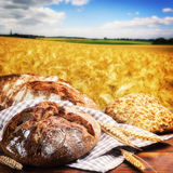 Freshly baked traditional bread Royalty Free Stock Photography
