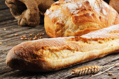 Freshly baked traditional French bread Stock Images
