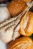 Freshly baked traditional rolls with ears of wheat grain Stock Photography