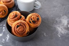 Freshly Baked Traditional Sweet Cinnamon Rolls, Swirl. Copy space. royalty free stock photo