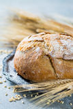 Freshly baked traditional wheat bread and wheat ears Royalty Free Stock Photography