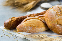 Freshly baked traditional wheat bread and wheat ears Royalty Free Stock Photos