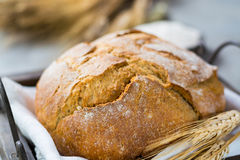 Freshly baked traditional wheat bread and wheat ears Stock Image