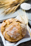 Freshly baked traditional wheat bread and wheat ears Royalty Free Stock Photo