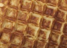 Freshly baked waffle Stock Images