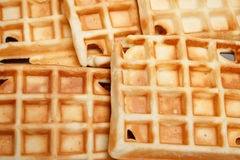Freshly baked waffles on a plate. Freshly baked waffles on a white plate Royalty Free Stock Image