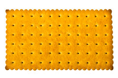 Freshly baked wheat biscuits Royalty Free Stock Photography