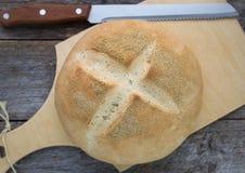 Freshly baked wheat bread Stock Photography